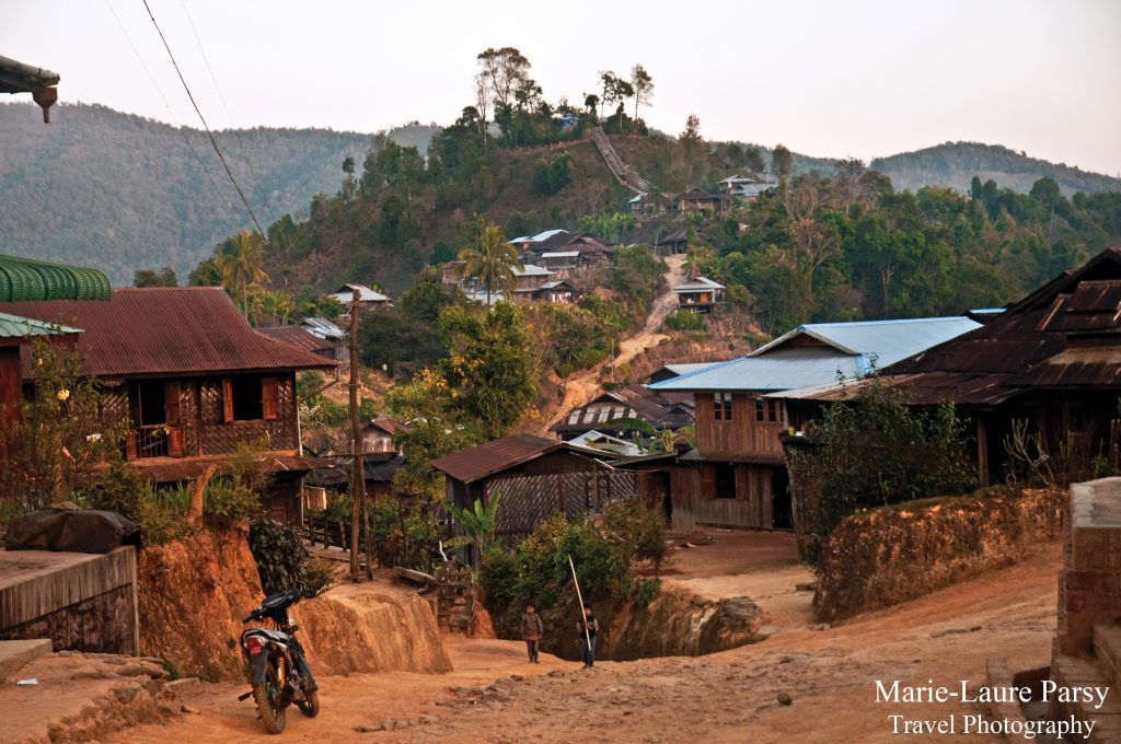 'The shy green of tea trees thaws into a bleached sky' - the host's Palung village.