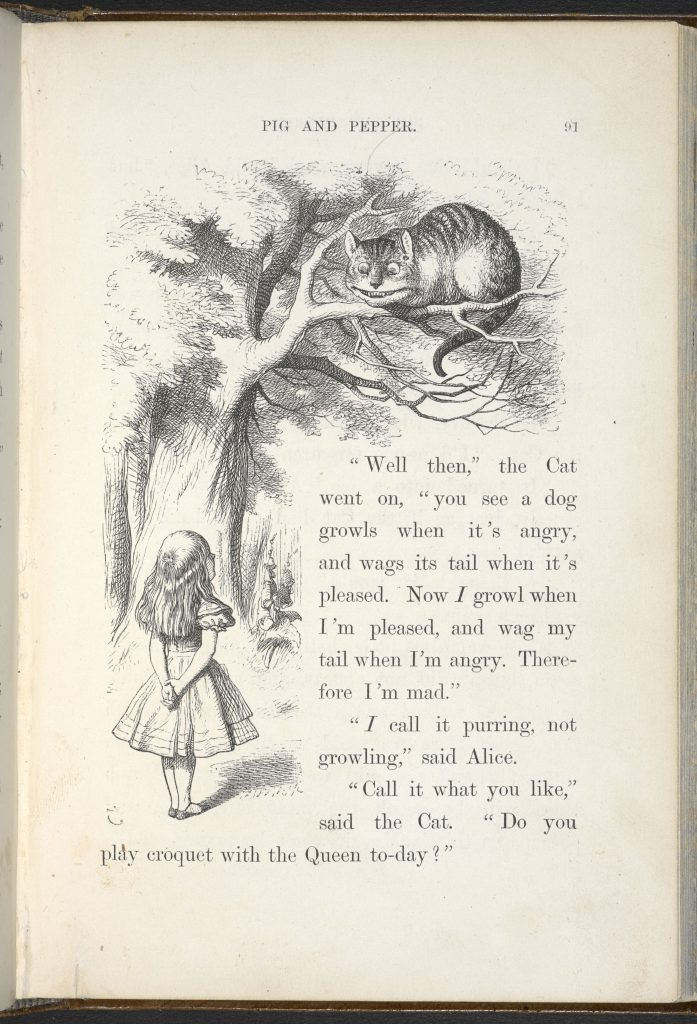 Sir John Tenniel's illustration of Alice and the Cheshire Cat from the 1866 edition of Alice's Adventures in Wonderland by Lewis Carroll © The British Library Board