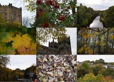Images of Durham in autumn