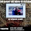Review: The Goat or Who is Sylvia?