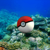 Real life Pokemon: Sea creatures edition